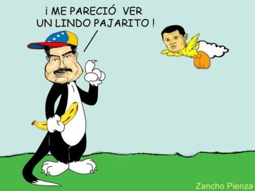 130408 Zancho