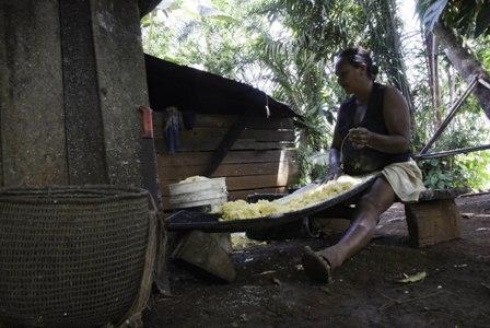 Foto: Preparación de fariña. Comunidad de Muritinga. Vaupés – Instituto Sinchi/Iván Montero