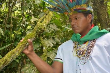 Imagen tomada durante la ruta del Yagé EL MUNDO