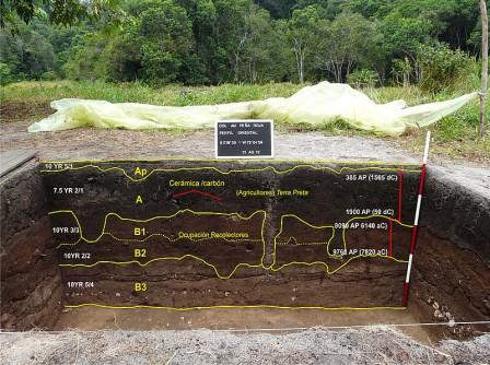 Varias excavaciones como esta fueron realizadas por los investigadores en un área determinada cada 10 o 20 metros, en Peña Roja. - Foto: cortesía Gaspar Morcote Ríos.