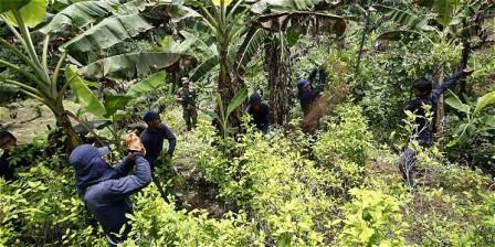 Foto: Archivo EL TIEMPO En el 2008, Ecuador demandó a Colombia ante la Corte Internacional de Justicia por los presuntos daños causados a cultivos de ecuatorianos por las fumigaciones de las autoridades colombianas.