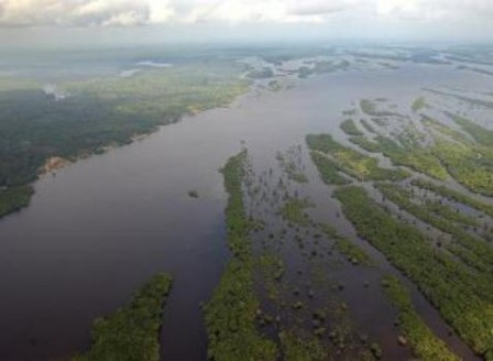 amazonaskundera