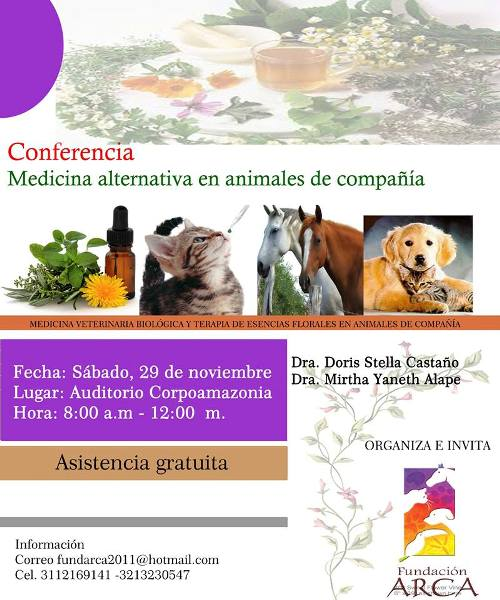 Conferencia Arca