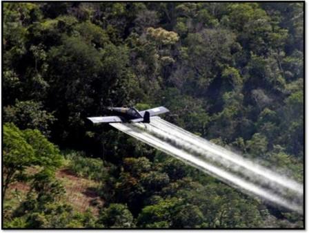 Foto Archivo EFE. http://www.senalradiocolombia.gov.co/noticia/denuncian-efectos-de-fumigacion-antidrogas-en-frontera-con-ecuador