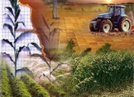 Un diamante energético que incluya actividades alternas a la exploración y la explotación de petróleo se empieza a formular en las regiones productoras de Colombia.