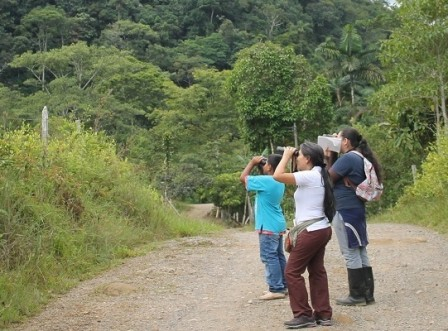 conteo aves Vereda Los Andes