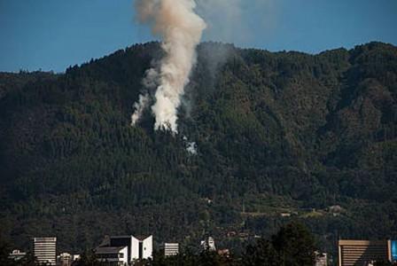 Un bosque es propenso a tener una huella en el paisaje provocada por incendios o actividades antrópicas.