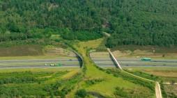 Pasos de fauna en las carreteras del Putumayo, una necesidad apremiante