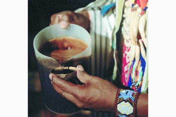 La comunidad cofán considera que el yagé es sagrado para ellos y por lo tanto Varela no tiene legitimidad para usarlo. / AFP