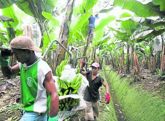 Los suelos de casi todo el país están en riesgo.  Foto: Bloomberg