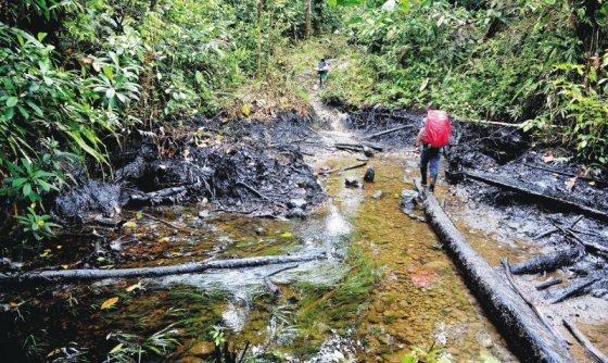 El pasado 8 de junio, las Farc derramaron 200 mil galones de petróleo en suelo nariñense, donde también están presentes los awás. / Nelson Sierra - El Espectador