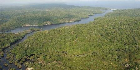 Foto: EFE Imagen del Río Amazonas en la frontera colombobrasilera.