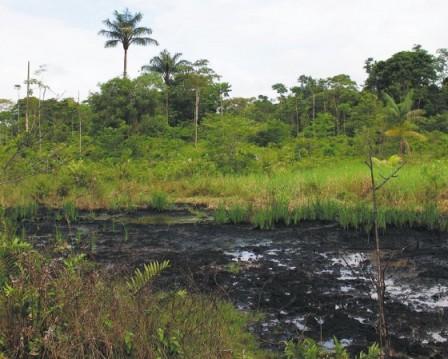 Putumayo ha sido históricamente asediado por los atentados contra la infraestructura petrolera. / Óscar Güesguán