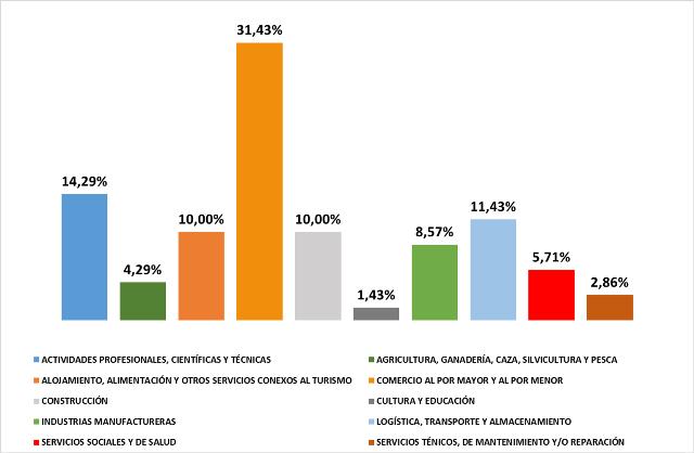 Fortalecimiento de Mipymes en el sur del país por sectores