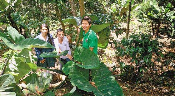 Elkin junto a sus dos compañeros con los que inició el proyecto en el colegio. / Cortesía