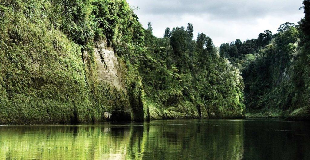 El río Whanganui es uno de los más importantes de Nueva Zelanda, y se encuentra en la reserva natural con el mismo nombre. / Foto: Tourism New Zealand for Bridge to Nowhere, Whanganui River y Old Coach Road