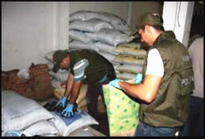 Incautados insumos para el procesamiento de base de coca