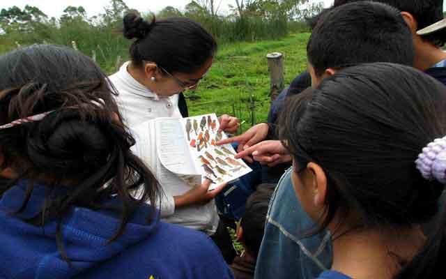 Valle de Sibundoy participará por primera vez en el censo neotropical de aves acuáticas