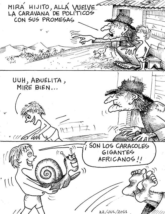 Conchudos