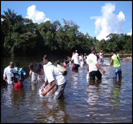 Corpoamazonia repoblará el río Mocoa con Bocachico amazónico