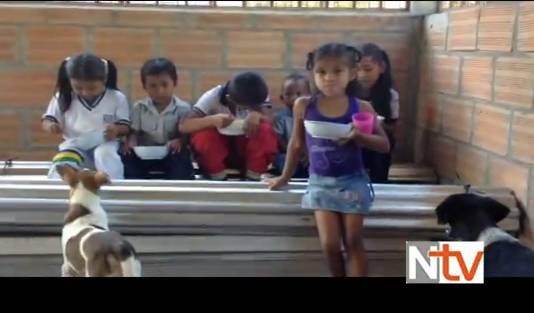 Niños de restaurante escolar comen en medio de animales