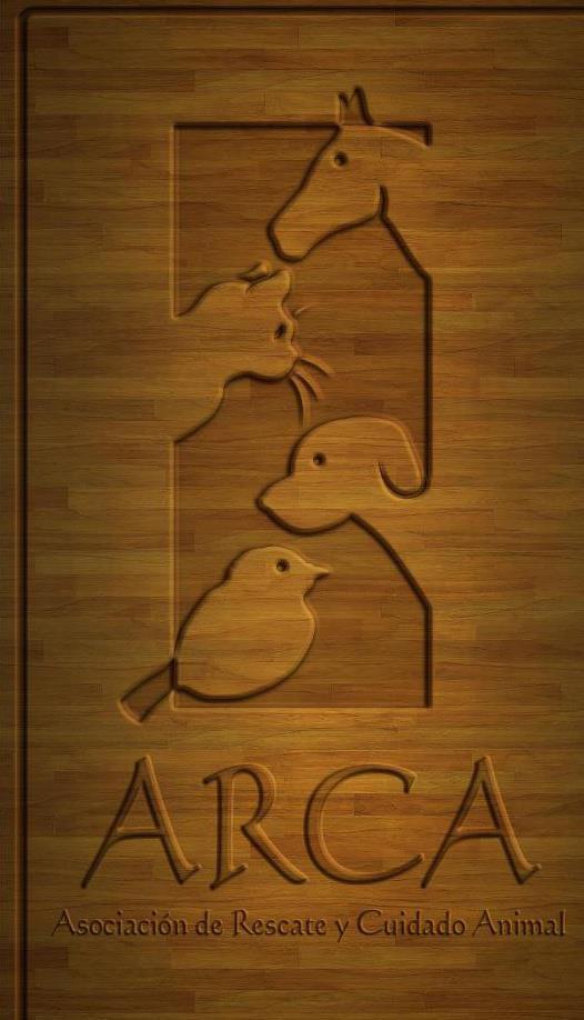 ARCA organiza Radiotón pro animales abandonados y maltratados