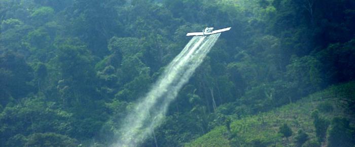 """La fumigación de """"cultivos ilícitos"""": una verdadera tragedia"""