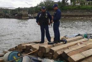Incautadas más de 1.700 piezas de madera en el Putumayo