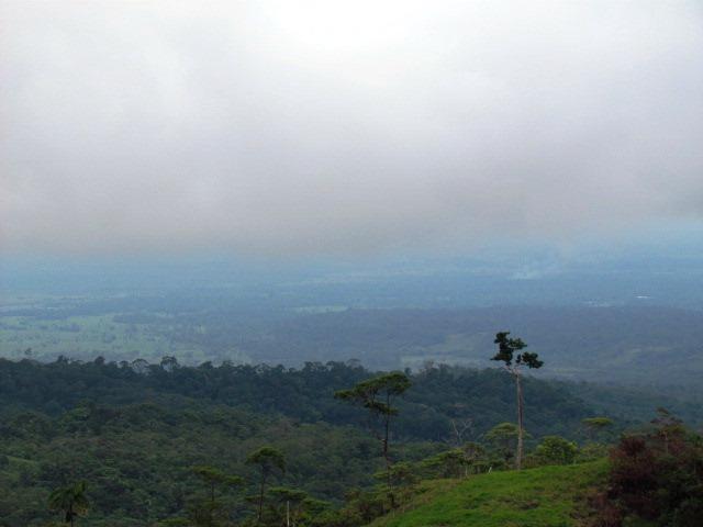 Reservas Forestales de la Amazonia de la Ley 2ª de 1959
