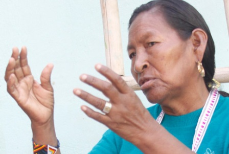 Ingas: cultura que sobrevive al cemento