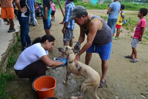 Fundación ARCA realiza jornadas de salud animal en Mocoa y Puerto Asís