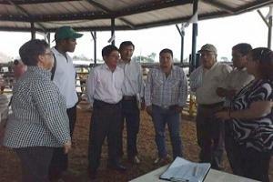 Colombia y Ecuador trabajarán para mejorar la ganadería fronteriza
