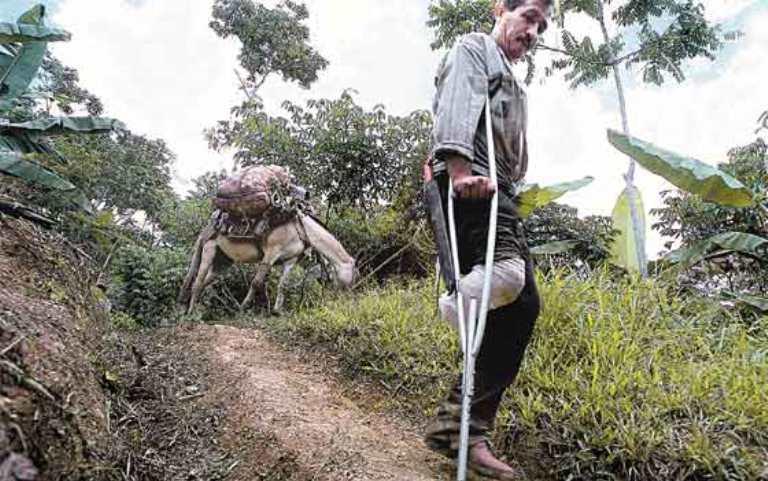 Putumayo, Antioquia, Chocó y Caquetá los departamentos con más víctimas de minas antipersonal