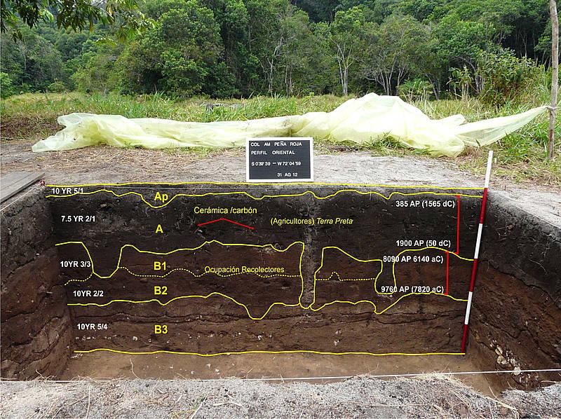 En selva amazónica hallan rastros de vida de 11.000 años