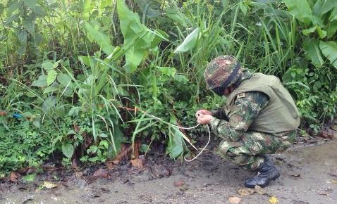 Sexta División neutralizó artefactos explosivos
