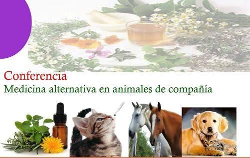 Conferencia – Medicina Alternativa en Animales de Compañía