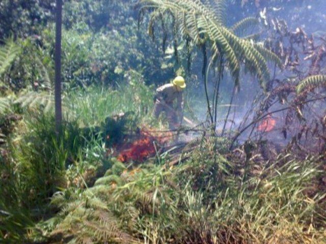 Alerta en 12 departamentos por incendios forestales