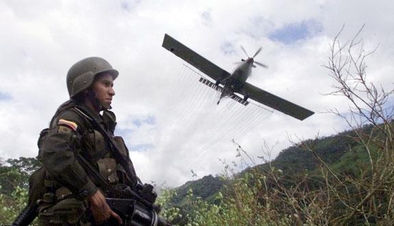 En Putumayo Fumigan comunidad de la Zona de Reserva Campesina