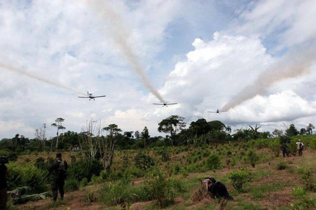 Continúan las fumigaciones en el Putumayo