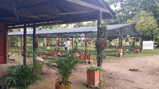 En Leguízamo se ejecuta proyecto en tres polos de desarrollo