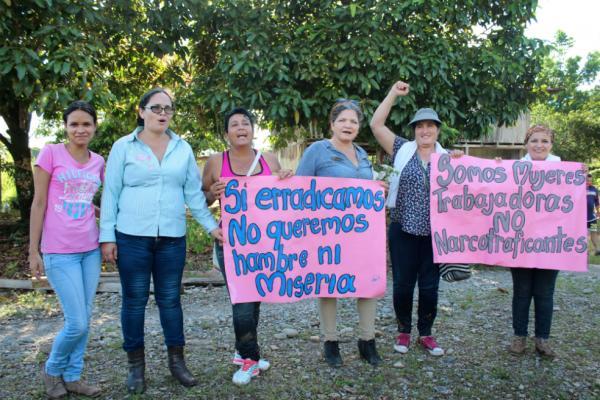 Así nace el movimiento de Mujeres Cocaleras del Sur de Colombia