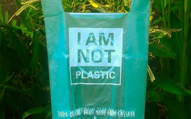 Unicauca logra nueva patente para bolsa biodegradable de almidón de yuca