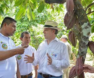 Gobierno brindará asistencia técnica integral a 7 mil familias comprometidas en sustituir cultivos ilícitos