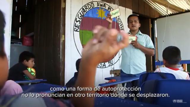 la comunidad awá mayasquer desplazada