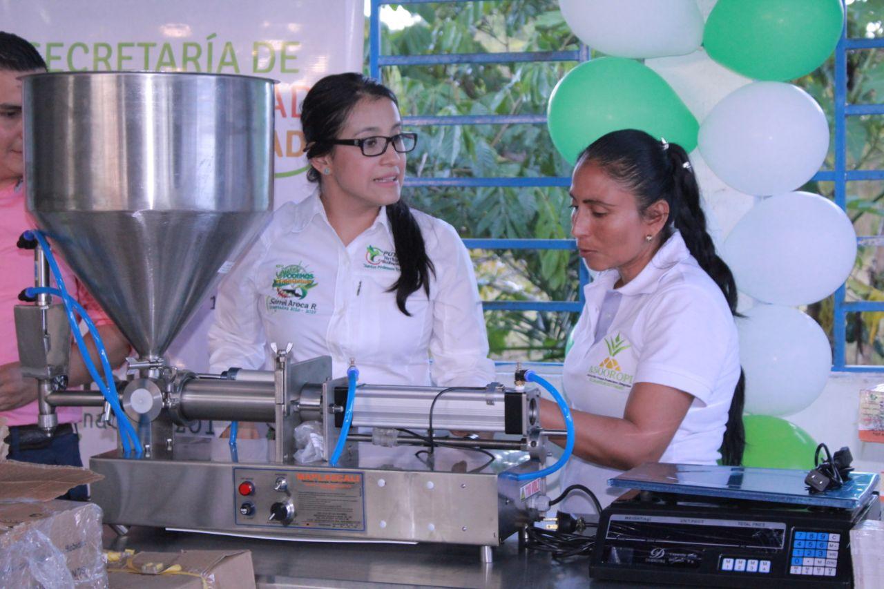 Fortalecimiento Agroindustrial del Cultivo de Piña en Oroyaco, Villagarzón