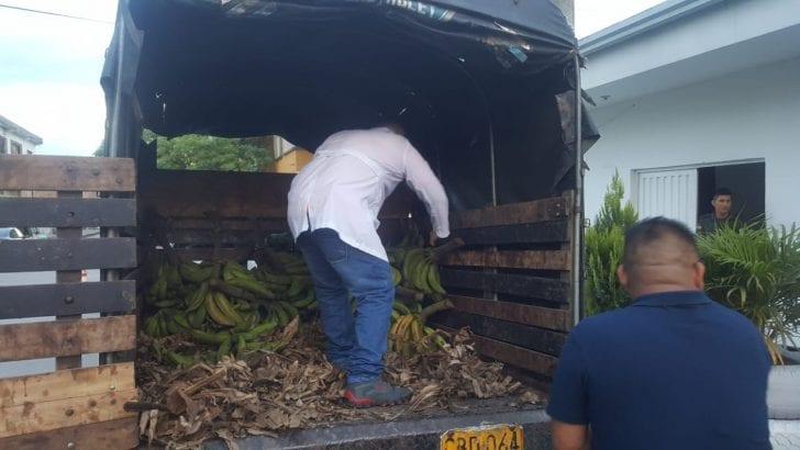 Incautados 22 kg de base de coca en camión que transportaba platanos