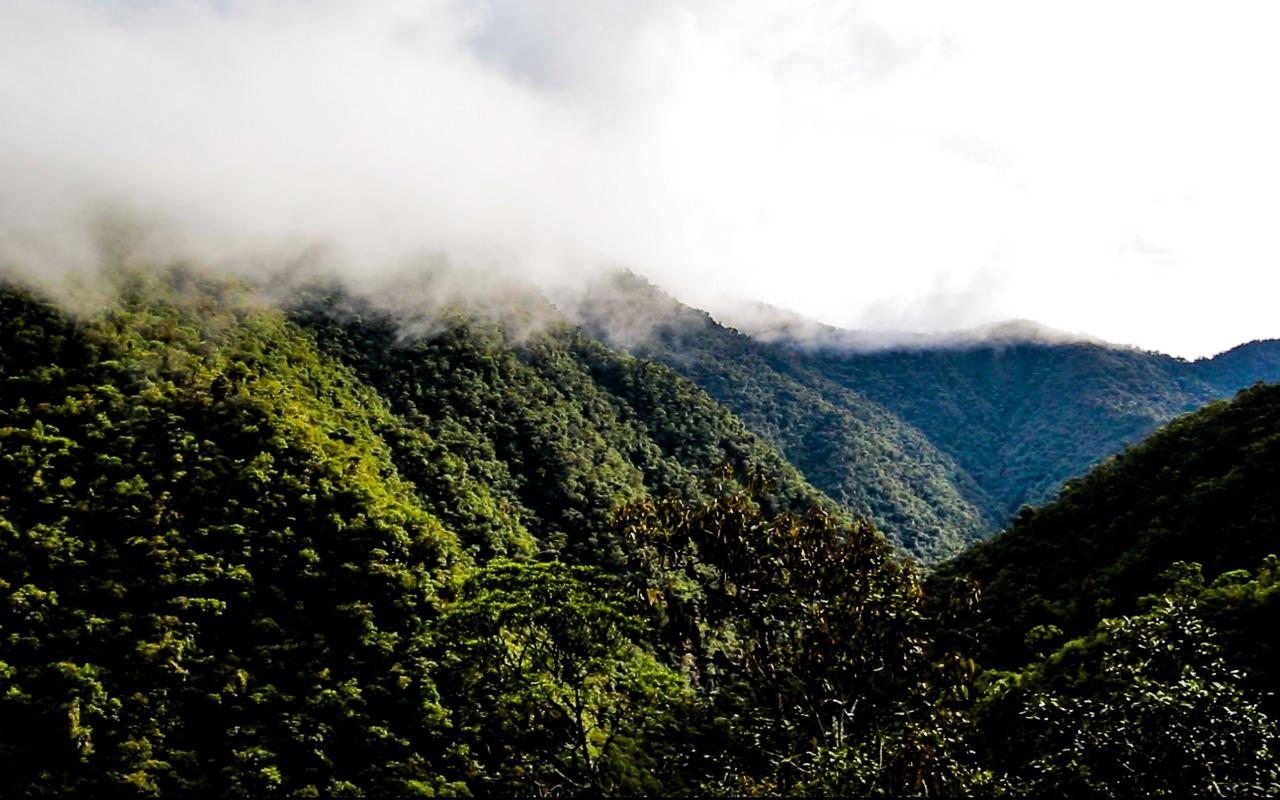 Crónica de una tragedia ambiental anunciada para el Alto Putumayo