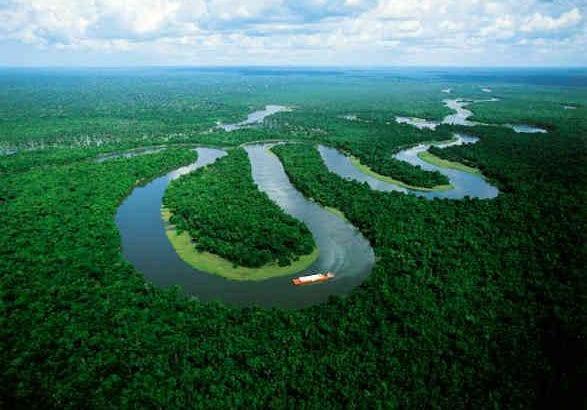 """""""Hay que replantear el modelo de desarrollo de la Amazonía"""": Sinchi"""
