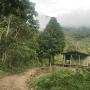Violencia en Putumayo, supera cifras del año pasado