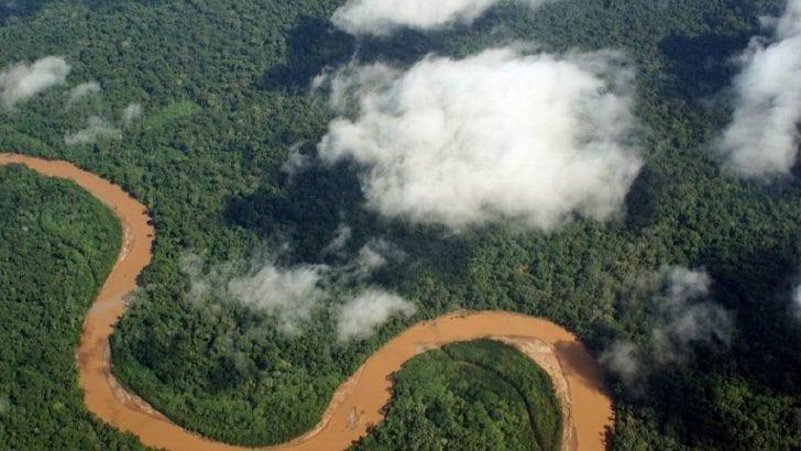 Abren convocatoria de más de $20 mil millones para proyectos indígenas en la Amazonía